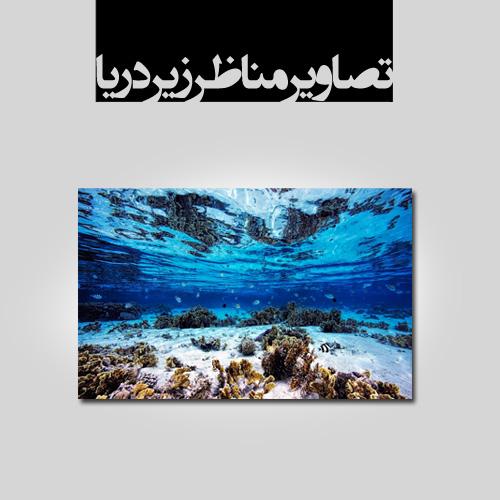 www.chapkhanehonline.ir | تصاویر زیر دریا