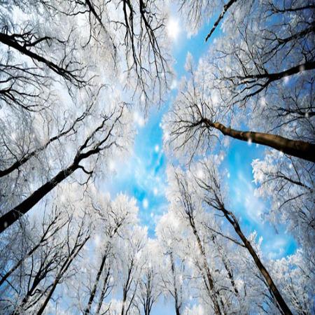 www.chapkhanehonline.ir | آسمان مجازی طرح شماره 3