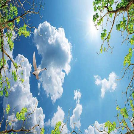 www.chapkhanehonline.ir | آسمان مجازی طرح شماره 7