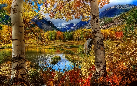 www.chapkhanehonline.ir | تصویر منظره طبیعی 4