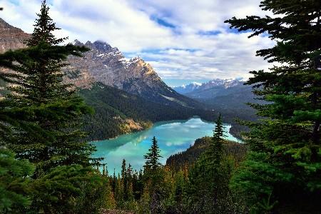 www.chapkhanehonline.ir | تصویر منظره طبیعی 12