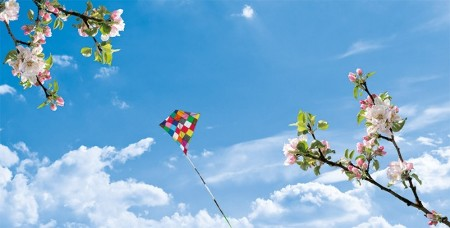 www.chapkhanehonline.ir | آسمان مجازی طرح شماره 18