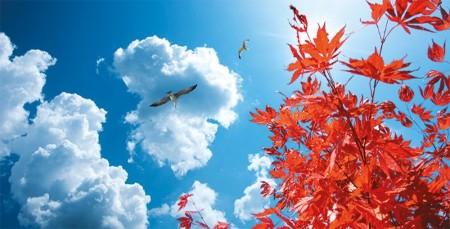 www.chapkhanehonline.ir | آسمان مجازی طرح شماره 20