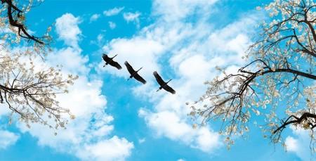 www.chapkhanehonline.ir | آسمان مجازی طرح شماره 25