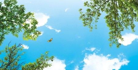 www.chapkhanehonline.ir | آسمان مجازی طرح شماره 30