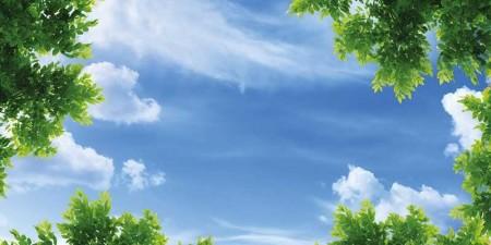 www.chapkhanehonline.ir | آسمان مجازی طرح شماره 32