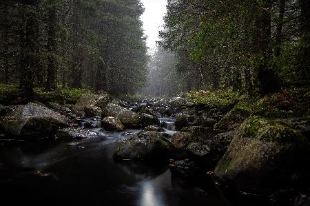 www.chapkhanehonline.ir | تصویر منظره طبیعی 27