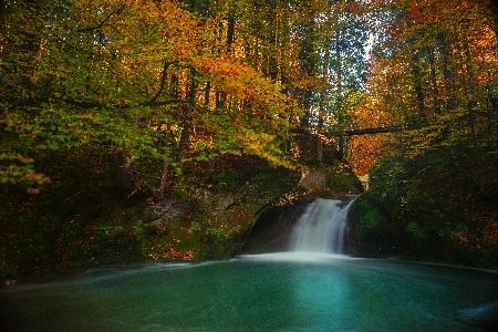www.chapkhanehonline.ir | تصویر منظره طبیعی 73